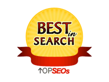 Best in Search TopSEO's Award