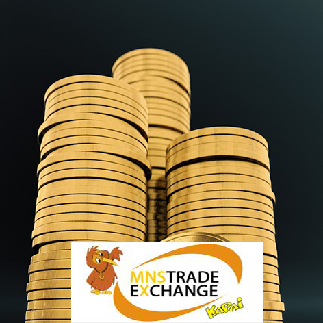 MNS Trade Exchange